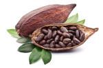 rohstoffe-kakao