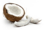 rohstoffe-kokos